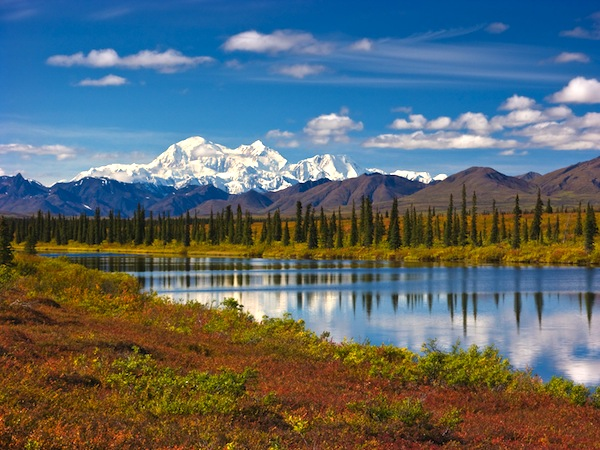 Denali National Park- 13 Gorgeous Landscapes Around The World