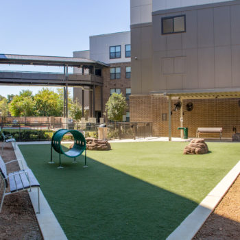 Multifamily Amenities- Dog Parks